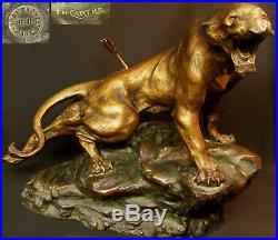 B 1930 CARTIER bronze animalier paire Lionnes rugissantes 60cm statue sculpture